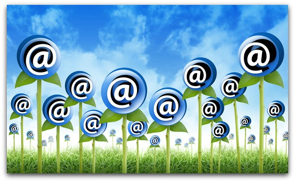 building email list